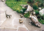 Entenfamilie mit Katze