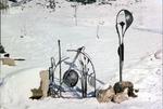 Gartentor mit Lampe in Schmiedebronze schwarz lackier